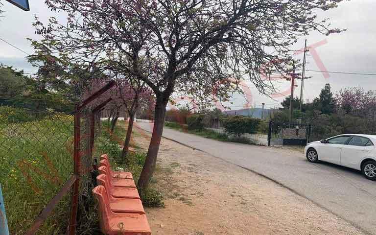 Συνελήφθη ο δράστης της επίθεσης με καυστικό υγρό στην Κυψέλη